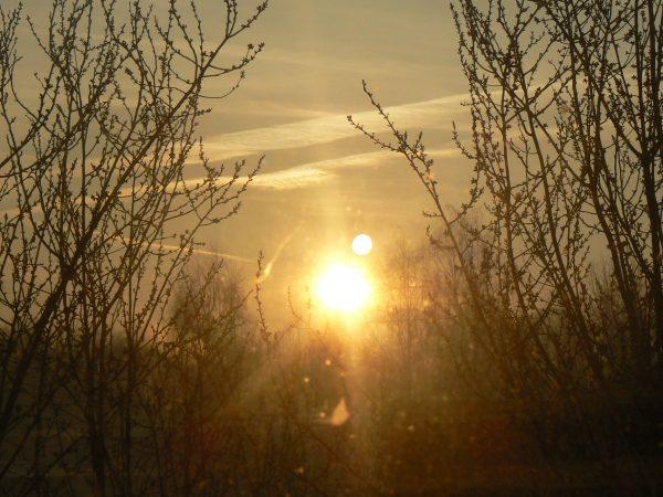 poranek pisarza, wschód słońca