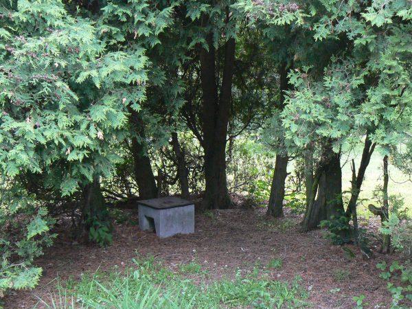 Park na Muchowcu