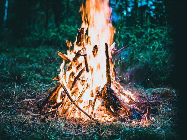 leśne ognisko