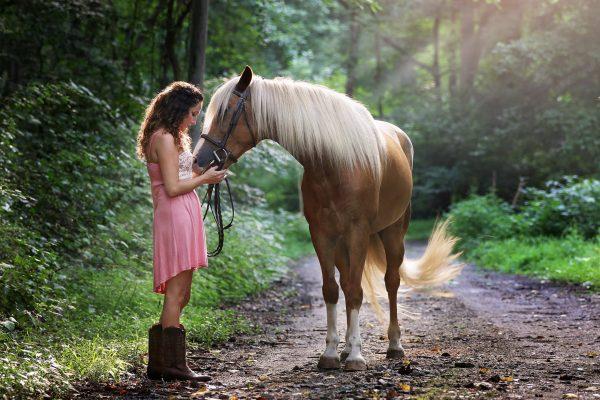 koń, dziewczyna, las