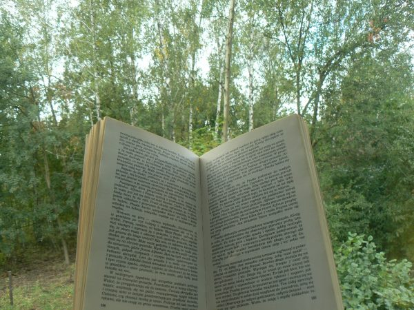książka na tle drzew